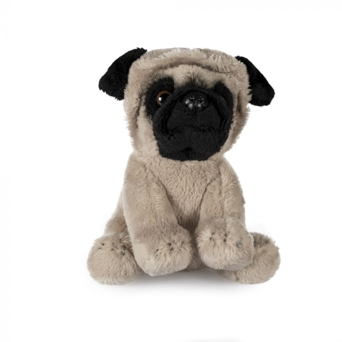 SmallDog Soft Toy, Assorted