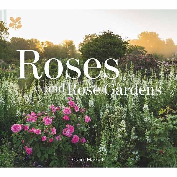 Roses and Rose Gardens