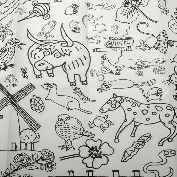 National Trust Colour-in Tablecloth