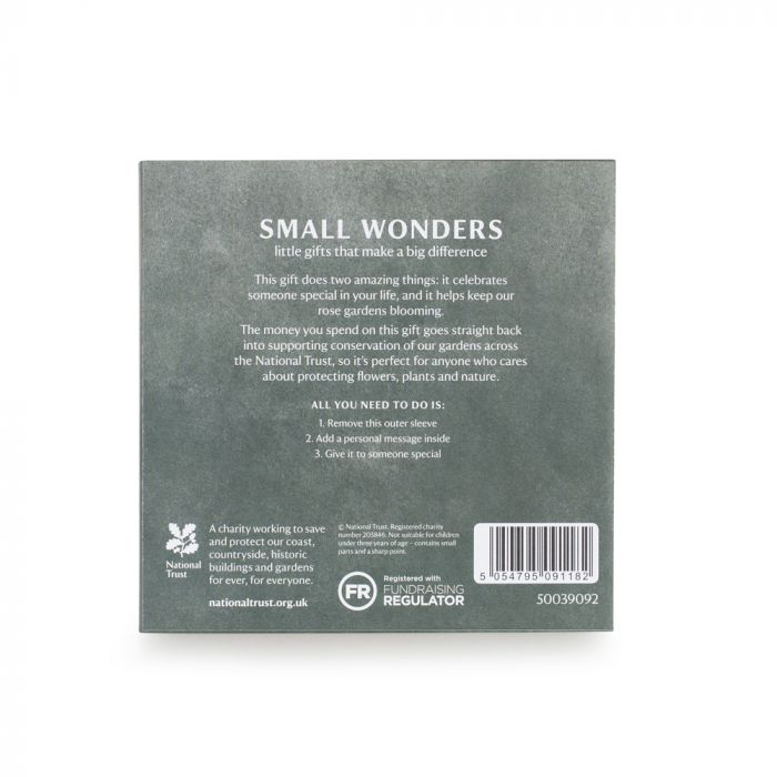 Small Wonder Gift, Garden Roses