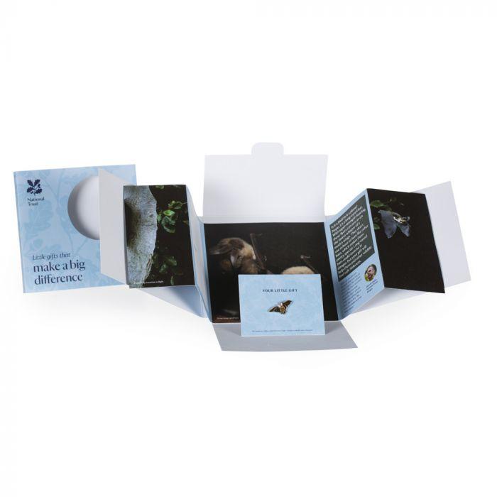 Small Wonder Gift, Long-Eared Bat