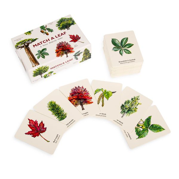 Match a Leaf, A Tree Memory Game