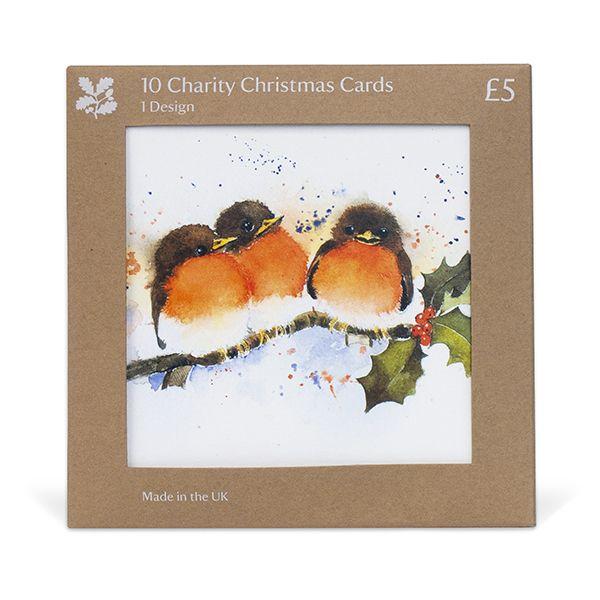 Rachel McNaughton Robins Christmas Cards, Pack of 10