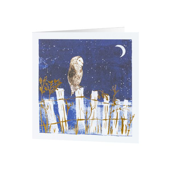 National Trust Owl on the fence Christmas Cards, Pack of 10
