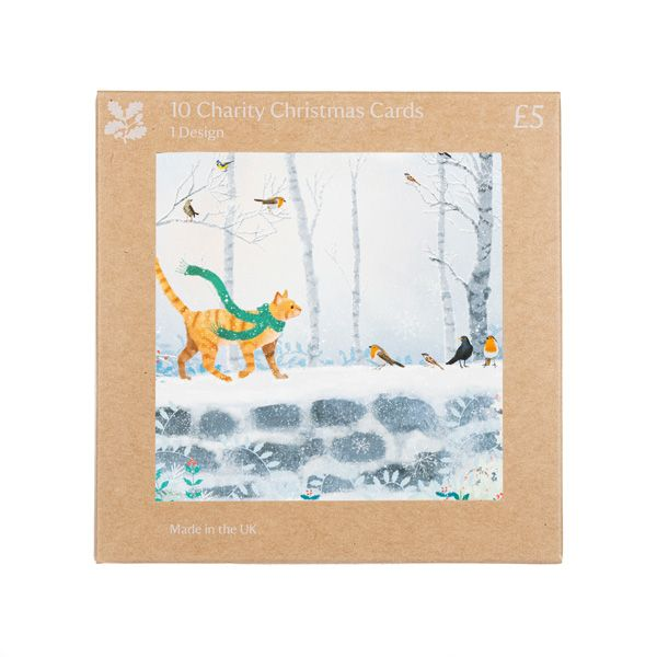 National Trust Ginger Cat Christmas Cards, Pack of 10
