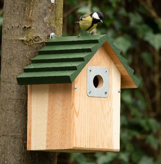 National Trust CJ Wildlife Vail Nest Box