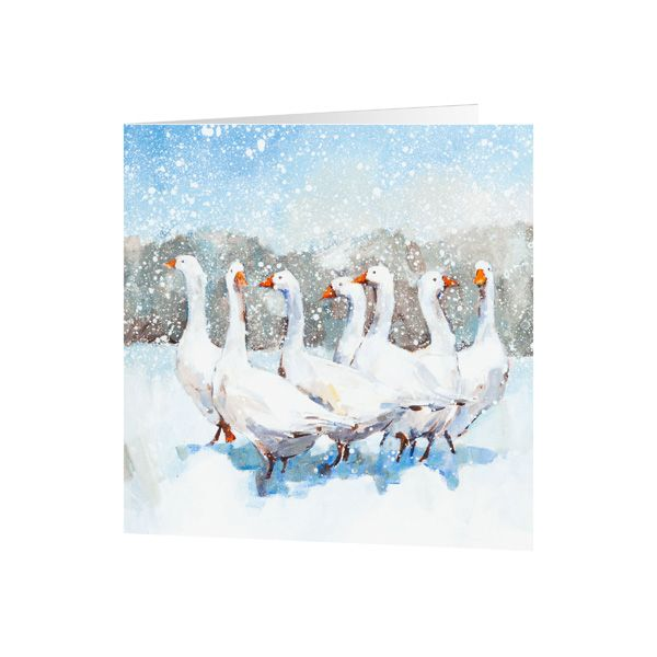 National Trust Gaggle of Geese Christmas Cards, Pack of 10