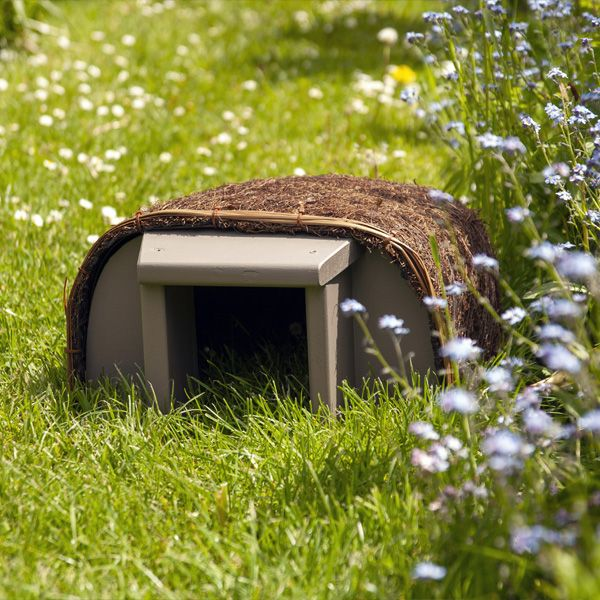 Timeless Range Hedgehog House
