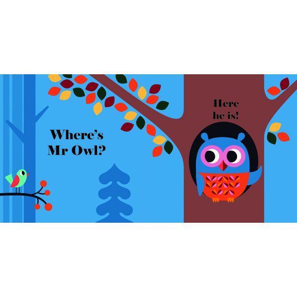 Where's Mr Owl? Book