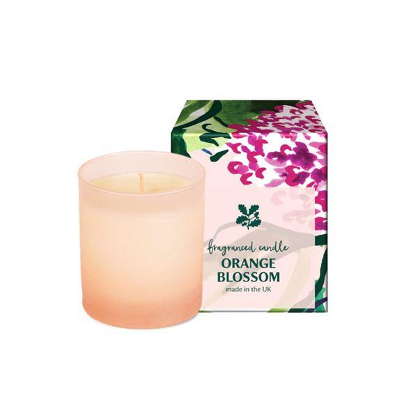 National Trust Orange Blossom Fragranced Boxed Candle