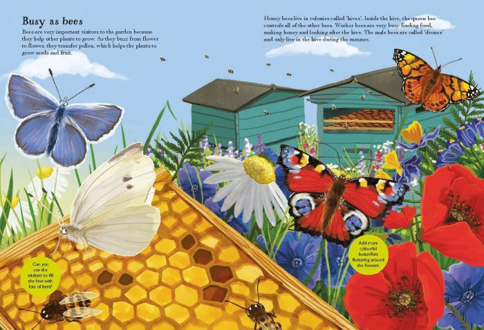 Beetles, Butterflies and other British Minibeasts