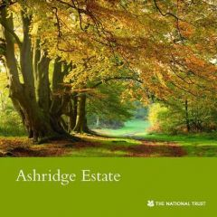 National Trust Ashridge Estate Guidebook