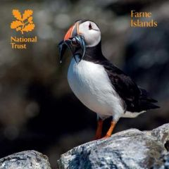 National Trust Farne Islands Guidebook