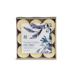 National Trust Fig Tree Tea Lights, Set of 9