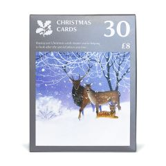 Rachel McNaughton Christmas Cards Large Value Pack, Pack of 30