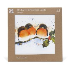 Rachel McNaughton Robins Christmas Cards, Pack of 10
