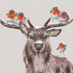 Festive Friends Deer and Robin Christmas Cards, Pack of 10