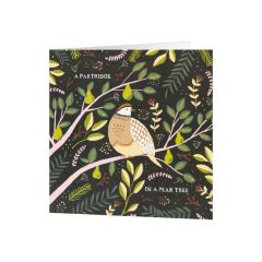 National Trust Partridge Christmas Cards, Pack of 10