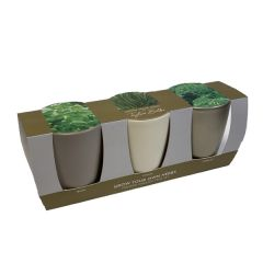 Grow Your Own Windowsill Herb Kit