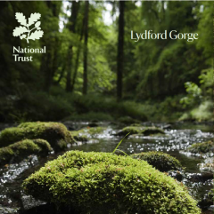 National Trust Lydford Gorge Guidebook