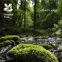 National Trust Lydford Gorge Guidebook