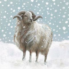 Ram and Ox Christmas Cards, Pack of 10