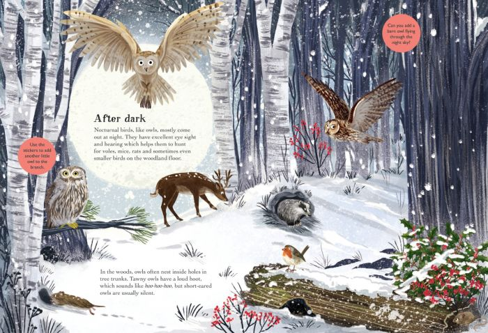 A Nature Sticker Book, Robins, Wrens and Other British Birds