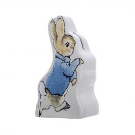 Beatrix Potter Peter Rabbit Money Box