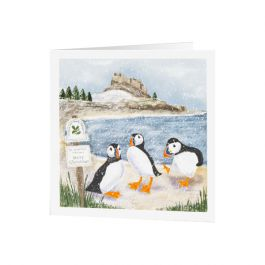 National Trust Puffin Christmas Cards, Pack of 10