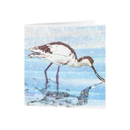 National Trust Avocet Christmas Cards, Pack of 10